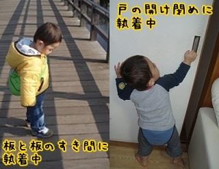 1sai6 (2)-tile.jpg